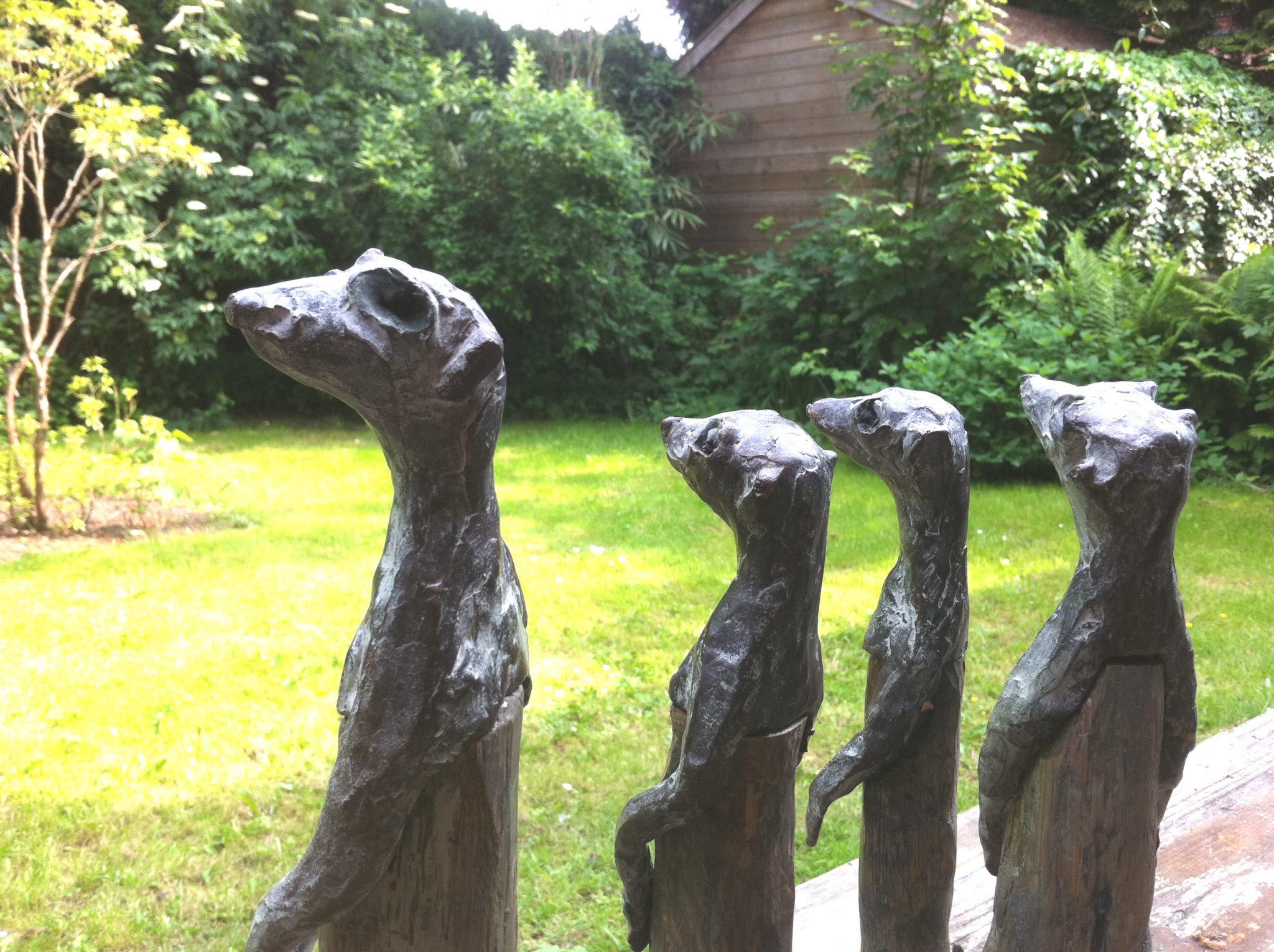 Wachters half - Bronse+Wood